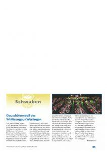 thumbnail of 2018-04-01_Bayr-Schuetzenzeitung-Gauball