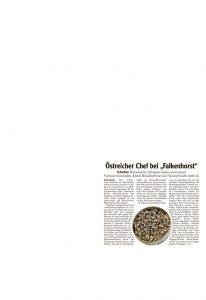 thumbnail of 2020-06-13_Wertinger Zeitung_Wortelstetten